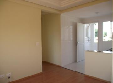 Apartamento para aluguel - em Bacacheri