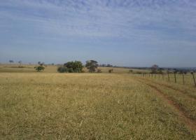 Rural à venda com 0 , Centro