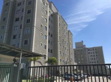 Apartamento para aluguel - em Pinheirinho
