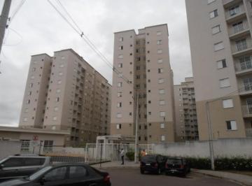 Apartamento para aluguel - em Tingui