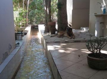 02-Rego d'água dentro de casa