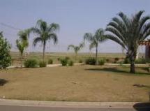 Terreno residencial à venda, Residencial Real Park, Sumaré.
