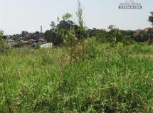 Terreno à venda em Itaquera