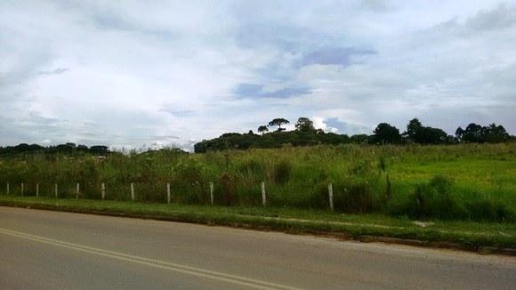 Terreno com 31.915m² em São José dos Pinhais