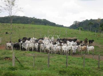 http://www.infocenterhost2.com.br/crm/fotosimovel/153966/39073823-chacara-fazenda-sitio-iguape-iguape.jpg
