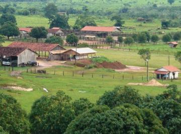Rural de 0 quartos, Rondolândia
