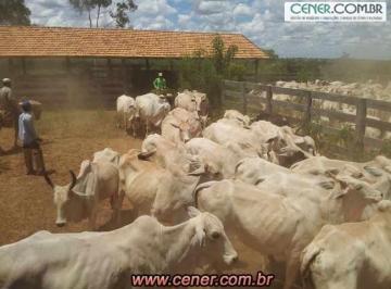 Rural de 0 quartos, Urucuia