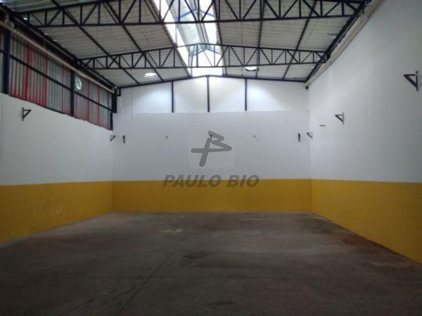 2251_ipaulobio2251_1721555.jpg