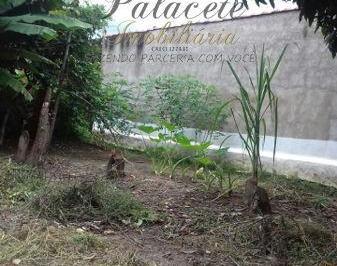 Terreno de 0 quartos, Itajubá
