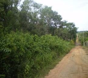 Rural de 0 quartos, Matozinhos