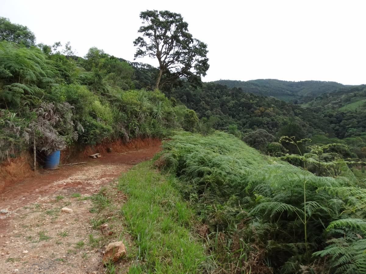 Chácara Santa Cruz - próximo ao reflorestamento Ibama