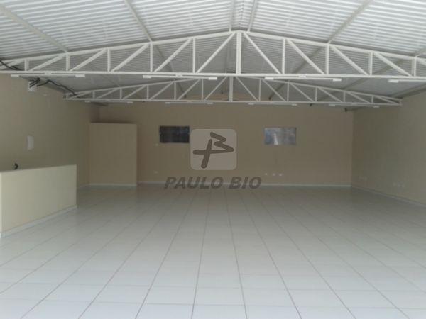 4101_ipaulobio4101_2131255.jpg