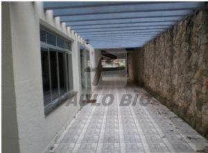 3466_ipaulobio3466_1248953.jpg