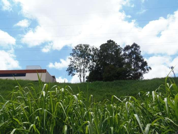 Terreno à venda - em Santa Lúcia