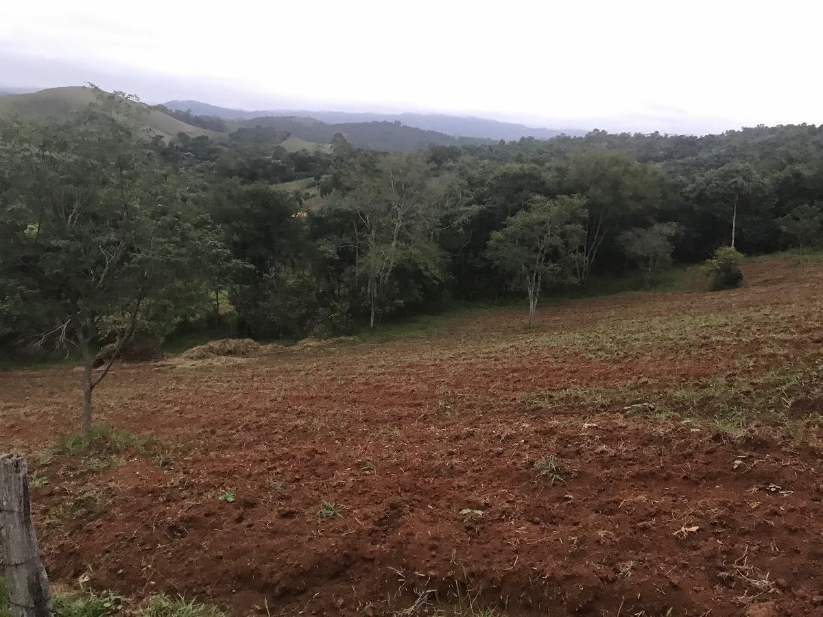 Terreno à venda - em Monte Negro