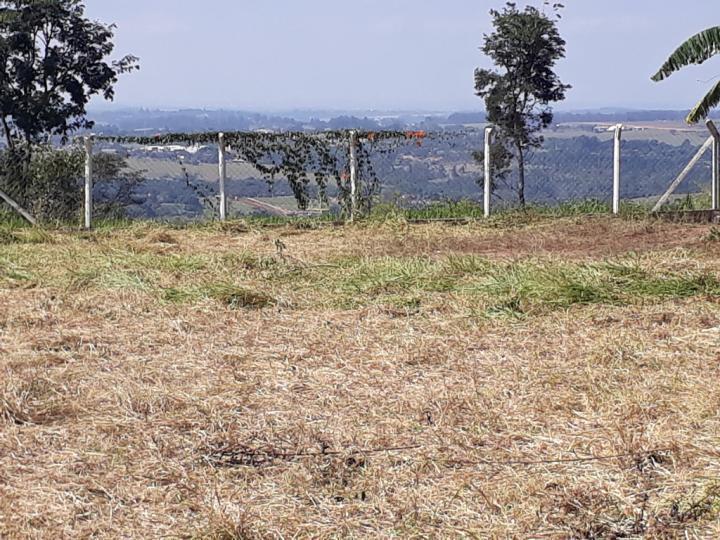 Lindo terreno com ótima vista