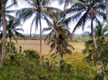 sitio-com-vista-para-o-mar-MAR0094-1445520317-1.jpg