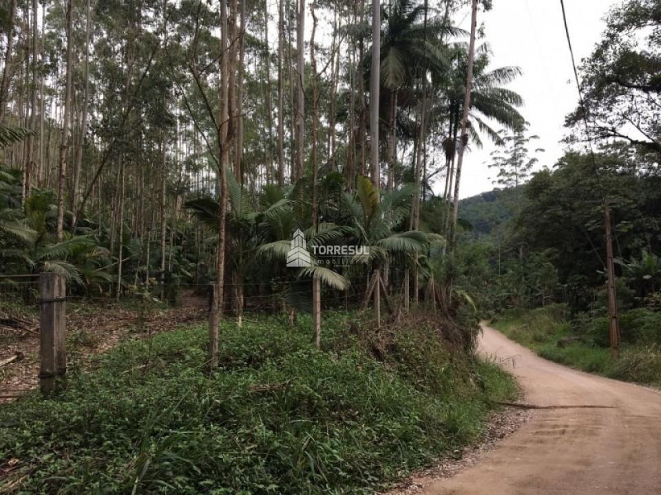 Terreno no bairro Belchior em Gaspar