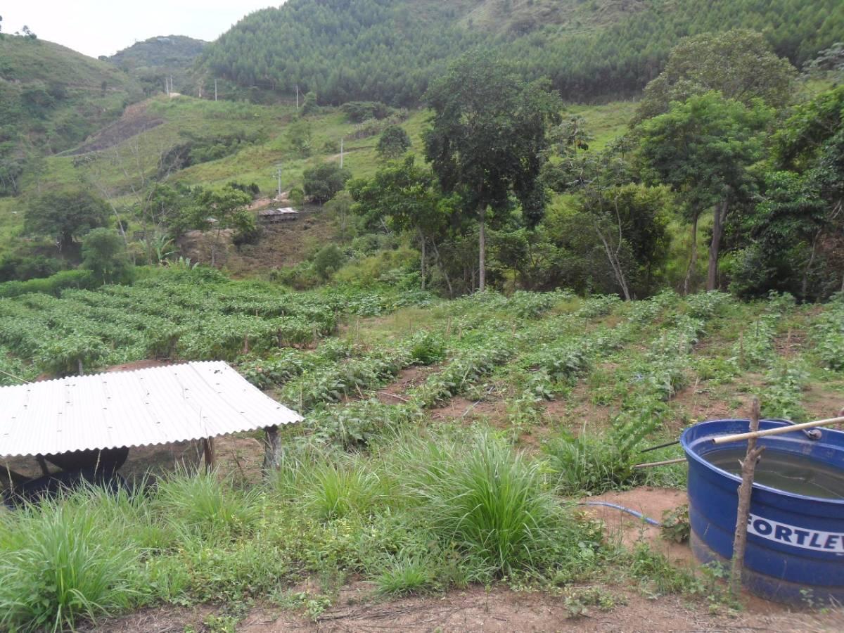 Sítio na Região Serrana, 4,6 Alqueires, Casa 02 Quartos e Plantação
