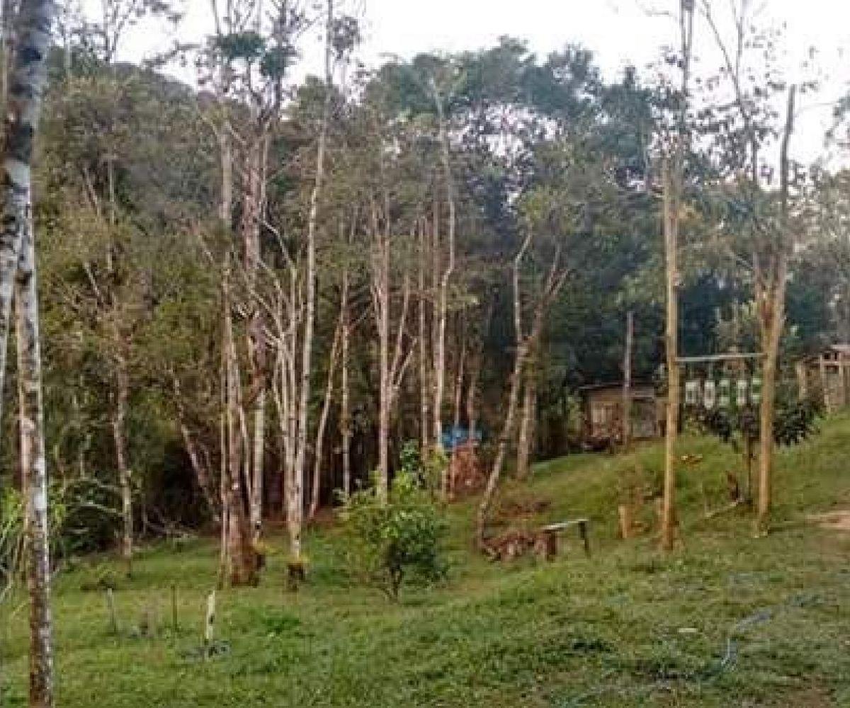 Vendo ou permuto sitio no escalvados Navegantes por casa em Itajaí