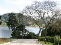 image- Ponta Das Castanheiras