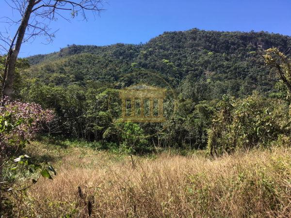 Rural - Ribeirão Grande