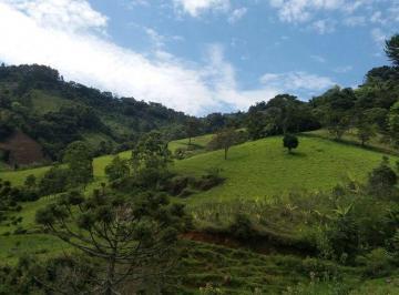 Rural de 0 quartos, Gonçalves