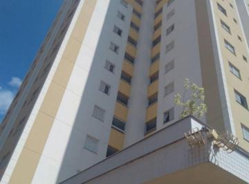 Apartamento de 3 quartos, Rolândia