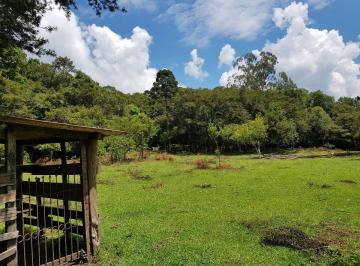 Rural de 0 quartos, Tijucas do Sul
