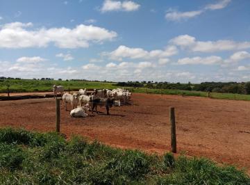 Rural de 1 quarto, Marília