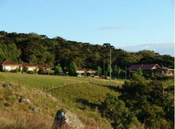 Rural à venda - no Centro