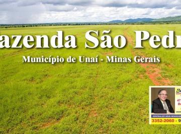 0 2018 - Fazenda São