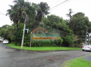 http://www.infocenterhost2.com.br/crm/fotosimovel/509106/110969082-terreno-loteamento-curitiba-santa-felicidade.jpg