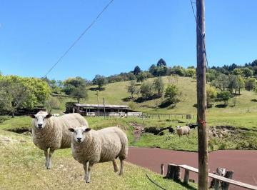 Rural de 2 quartos, Bocaiúva do Sul