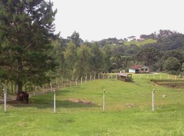 Rural de 3 quartos, Quitandinha