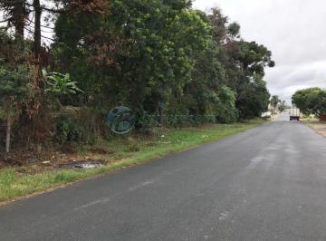 http://www.infocenterhost2.com.br/crm/fotosimovel/656729/119205230-terreno-curitiba-cajuru.jpg