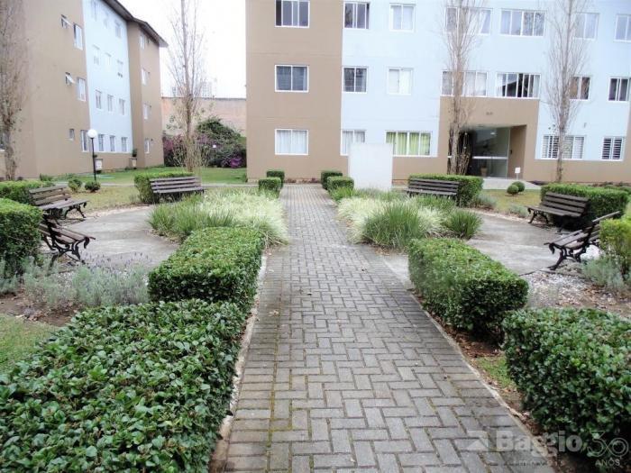 Apartamento para aluguel - em Orleans