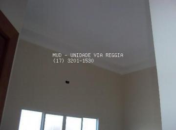 16120231.jpg