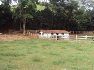 Fazenda em Paraíba do Sul, 50 Alqueires, água em abundância