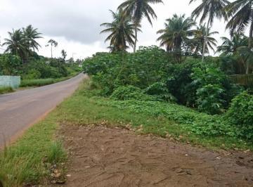 Terreno de 0 quartos, Nísia Floresta