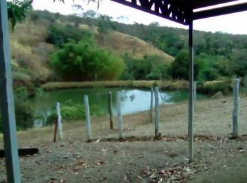 Rural de 5 quartos, Girassol
