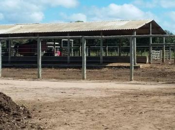 Rural de 0 quartos, Patos de Minas