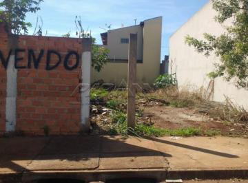 bonfim-paulista-terreno-terreno-santa-cecilia-03-10-2018_17-53-49-0.jpg