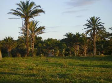 ilha-de-penedos-ANN0002-1540320065-1.jpg