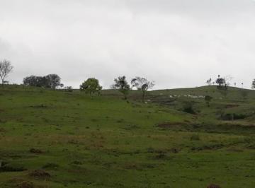 Rural de 0 quartos, Cesário Lange