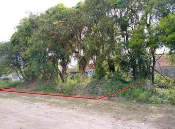Terreno demarcado em vermelho