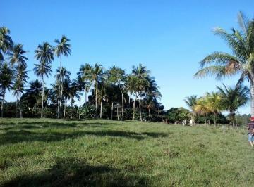 Rural de 4 quartos, Anchieta