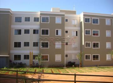 aracatuba-apartamento-padrao-santa-luzia-26-02-2019_18-06-07-7.jpg
