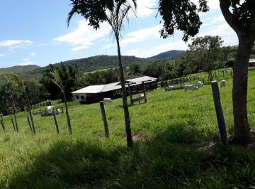 Rural de 0 quartos, Planaltina de Goiás