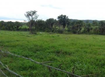 Rural de 1 quarto, Colinas do Sul
